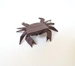 Shore Crab (Ponadr) Tags: origami sea life ocean crab shore paper paperfolding