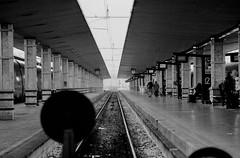 STOP (michele.palombi) Tags: ferrovia acciaio firenzesmn tuscany florence stazione 400asa film35mm analogicshot train stop