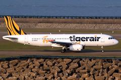 Tigerair Taiwan | Airbus A320-200 | B-50003 | Macau International (Dennis HKG) Tags: ttw it tigerair tigerairtaiwan aircraft airplane airport plane planespotting canon 7d 100400 macau vmmc mfm macao airbus a320 airbusa320 b50003 taiwan