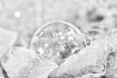 Bubbles & ice (Mireille L.) Tags: lookingcloseonfriday white blanc bubbles bulles ice macrophotography