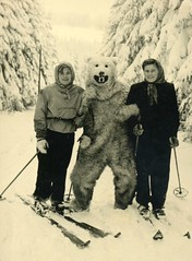 Skiers Posing with a Polar Bear (Alan Mays) Tags: ephemera photographs photos foundphotos snapshots souvenirphotos souvenirs portraits women clothes clothing gloves mittens headscarf headscarves babushkas polarbears bears animals costumes polarbearcostumes bearcostumes eisbärkostüme eisbären bären kostüme skiing skiers skis skipoles sports snow trees winter deutschland germany german 1940s 1950s antique old vintage vptp