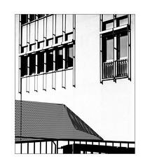 windows above the (w)holy fence (Armin Fuchs) Tags: arminfuchs lavillelaplusdangereuse würzburg fence hff 6x7 contrast holes niftyfifty perforatedsheetmetal