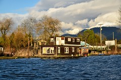 Floating Home/ Alouette River Dykes Trail/ South Arm Alouette River (SonjaPetersonPh♡tography) Tags: homes canada mountains water river bc waterfront britishcolumbia peaks waterscape mountainlandscape pittmeadows pittmeadowsmarina southarmalouetteriver nikon scenery waves wind scenic riverfront mountainpeaks grantnarrowsregionalpark nikond5300 afsdxnikkor18300mmf3563gedvr floatinghome