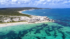 Hamelin Bay_0215