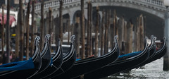 Gondolas in front of Rialto Bridge (pe_ha45) Tags: gondola gondel rialtobridge canalgrande venice venise venedig