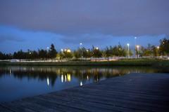 Paysage : Knooppunt Schiphol Noord (Nabil Molinari Photography) Tags: paysage knooppunt schiphol noord