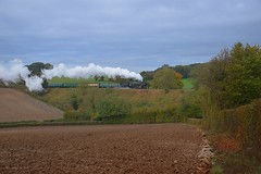 9F Locomotive 92212 climbing up the 1 in 60 gradient away from Ropley towards Four Marks with the 10.0 service from Alresford. Mid Hants Railway 20 10 2019 (pnb511) Tags: midhantsrailway train engine loco locomotive 9f 2100 smoke power br standard rural trees ploughed field