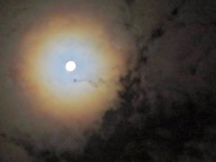 Full Moon and Corona's Blue-White Aureole In Quickly Moving Rain Clouds ☁️ (Chic Bee) Tags: astronomy astronomical canonpowershotsx70hs moon fullmoon lunarcorona lunaraureole lunar imagepostprocessing experimental colorful explained opticalphenomena sky nightsky rainclouds movingclouds