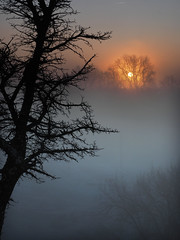 Another foggy sunrise (II)... (Felip Prats) Tags: albada amanecer sunrise foggy boira niebla