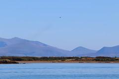 Inland Sea RAF Valley (tom.caddick) Tags: newborough anglesey northwales cymru wales angleseyphotography