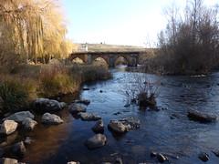 Puente sobre el río Duero - Garray - Soria (EduOrtÍn.) Tags: soria garray castillaleón rio puente tera agua duero