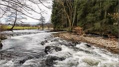 Oly_P1090018 (calpha19) Tags: imagesvoyagesphotography adobephotoshoplightroom olympusomdem1mkii ed8mmfisheyef18pro river rivière lavologne vologne grangessurvologne vosges grandest ngc geo flickrsexplore