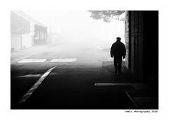 """""""Dans Les Traces Du Poulpe Ou Pour L'Attendrir Faut Taper Dessus... 31"""" (TBWLC Photography) Tags: fdrouet tbwlc nb bw monochrome street penhoët nikon d750 myst brume saintnazaire"""