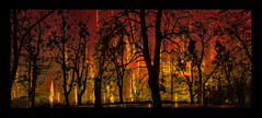The Forests are burning (franzisko hauser) Tags: fire climachange forest panophotography processing filter doubleexposure trees nikond5300 framed earhwarming coal co2