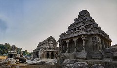 The Five Rathas (abhishek.verma55) Tags: incredibleindia pancharathas pandavarathas fiverathas travel outdoor morning chariot architecture india architecturelover indiatravel travelphotography traveller ancient old temple monolith rock art heritage mahabalipuram unescoworldheritage unesco indiaexplore pano flickr photography rocks beauty panorama outside view wanderlust history historical historic architectural landscape fujifilmxt20 beautiful indianculture famousplaces famousmonuments monument tourism exploreindia outdoors earlymorning travelphotos ©abhishekverma exploration