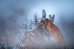 Cloaked (Chris Williams Exploration Photography _) Tags: zion zionnationalpark southernutah nationalpark landscape nature winter utah fujifilm fujifilmxt2 snow ice trees mountains canyon cliff chriswilliams fog foggy