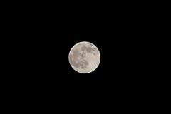 Moon@tokyo_waseda (Ripple design) Tags: α7rⅳ sony ilce7rm4 sigma 70200mm f28 moon