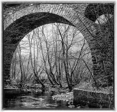 Railroad viaduct, River Ruwer near Pluwig (werner-marx) Tags: analog film meinfilmlab mediumformat agfaisoletteiii solinar kodakektar100 pluwig ruwer viaduct