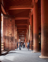 Templo Horju-Ji (diocrio) Tags: japón nara horyuji templo