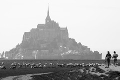 Sun mist (Michel Couprie) Tags: europe france normandy normandie manche montsaintmichel bw nb noiretblanc blackandwhite sheep people sunmist church église abbaye abbey architecture seaside canon eos couprie ef300mmf4lis