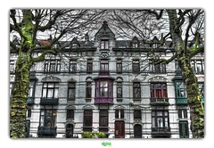 GENT / PARKLAAN (régisa) Tags: gent gand parklaan rue street facade house maison belgique belgië oostvlaanderen