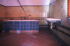 Freitag ist Badetag (michael_hamburg69) Tags: lostplace offthemap abandonedplace urbanexploration urbex phototourmit3daybeard3tagebart unterwegsmitchristian klubhausderbauarbeiter bauundmontagekombinat badewanne waschbecken badezimmer tiles kacheln blau blue tub bath bathtub bubblebath gekachelt duschbrause spiegelwerdenüberbewertet seifenschale