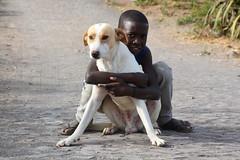 complicité Cap vert _3667 (ichauvel) Tags: chien dog animal enfant child garçon boy amitié complicité rue street enfance childhood village ruivaz iledesantiago capvert caboverde afrique africa voyage travel exterieur outside