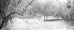 On a chilly, wintry morn... (JDS Fine Art Photography) Tags: bw monochrome trees lake cold chilly winter dock nature inspirational beauty atmosphere cinematic mist misty naturalbeauty landscape sunrise