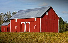 Old Barns - Midwest - United States (Therese Beck) Tags: oldbarns unitedstates midwestoldbarns eriemichigan farm belt barns