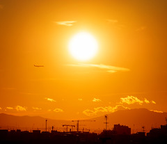 Avión directo al sol poniente (dorieo21) Tags: sonnenuntergang sunset exquisitesunsets sun himmel sky urbanscape cielo ciel cloud clouds ocaso atardecer tramonto nube nubes nuage nuages nuvola nuvole crépuscule crepúsculo avión airplane avion aeroplano flugzeug