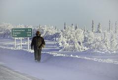 Sub-zero walk in Alaska (JLS Photography - Alaska) Tags: alaska alaskalandscape landscape lastfrontier cold frozen frosty freezing man people snow sky scenery wilderness winter winterlandscape frost hoarfrost sign jlsphotographyalaska