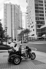 Miami mood (Jack_from_Paris) Tags: l3000091bw leica m type m10p 20021 leicaelmaritm28mmf28asph 11606 dng mode lightroom capture nx2 rangefinder télémétrique noiretblanc bw blackandwhite monochrome wide angle rue street building tour skyscraper palm tree palmiers moto trike tricyle harley davidson