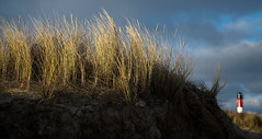 beim Leuchtturm in Hörnum (andreas.zachmann) Tags: turm deu abendstimmung sand dünen winter strand himmel leuchtturm dünengras wolken abendlicht hörnum schleswigholstein deutschland