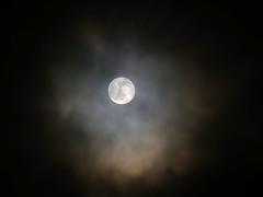 wolf moon (auroradawn61) Tags: 120photosin2020 lumixgx80 dorset uk england january 2020 winter poole fullmoon wolfmoon afterdark ghostly