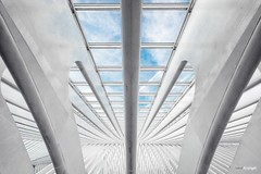 To sacred places I'd reside (Holger Glaab) Tags: garedesguillemins calatrava railwaystation architecture modernarchitecture ceiling windows liége symmetry