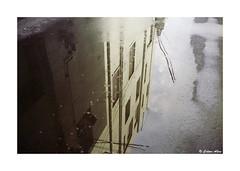 (Daiku_San) Tags: film ishootfilm 35mmfilm colorfilm rangefindercamera usetheforce expiredfilm canon7 canonltm352 scotchcolor100 epsonv750mpro