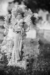 Double Exposure Experimentation (oneselfsacrifice) Tags: graveyard cemetary grave headstone statue memory angel angels