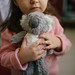 Little girl holding a koala toy closeup.