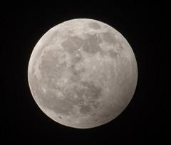 ECLISSE - PENOMBRA (G.Sartori.510) Tags: pentaxk1 hdpentaxda14xafawrc hdpentaxdfa150450mmf4556eddcaw lunapiena eclissepenombra fullmoon eclipsetwilight
