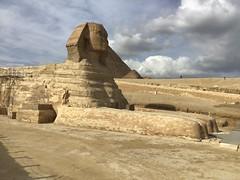 Giza Colours - The Sphinx (Pushapoze (MASA)) Tags: egypt egypte egitto stones pierres pietre camel pyramide giza market