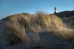 am Ellenbogen (andreas.zachmann) Tags: turm deu listaufsylt sand dünen winter strand himmel dünengras leuchtturm list schleswigholstein deutschland