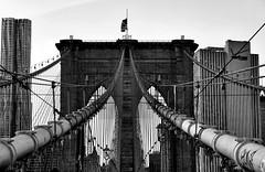 1875 (wNG555) Tags: 2015 newyork newyorkcity brooklyn brooklynbridge bw a6000 sel1855 fav25 fav50 fav100