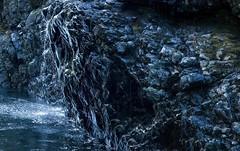 20190115D8E_6450 PanoFLR (cisco42) Tags: bc britishcolumbia canada sooke sookepotholes rain river rock splashing reflections