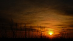Kansas Morning. (Tim @ Photovisions) Tags: xt2 dawn fuji sun fujifilm prairie marshallcounty kansas sunrise clouds sky morning onlyinkansas
