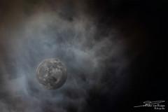 Penumbral Lunar Eclipse (PvRFotografie) Tags: astrophotography moon maan eclipse penumbrallunareclipse sonyilca99m2 500mm minoltaaf500mmf80reflex vintagelens minolta nature natuur nacht night nightsky