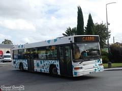 HEULIEZ GX 317 - 9555 - Transdev Urbain Libournais (Clément Quantin) Tags: bus autobus standard urbain ligne heuliez heuliezbus gx gx317 €3 9555 be482vk transdev urbainlibournais transdevurbainlibournais groupe groupetransdev réseau calibus calibuslibourne calibusurbain communautédagglomération cali libourne