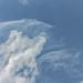 Sky Puff 11