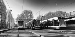 Trams Flevoparkbad 27-12-19 (c.stoof) Tags: trams flevoparkbad flevopark insulindeweg amsterdam oost indischebuurt