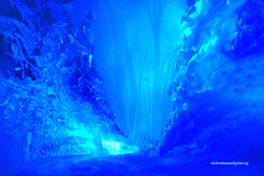 DREAMING A BLUE WINTER FOREST. (Viktor Manuel 990.) Tags: winter invierno azul blue forest bosque snow nieve digitalartandpainting pinturayartedigital dream sueño querétaro méxico victormanuelgómezg