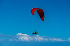 sky's the limit (Greg M Rohan) Tags: d750 nikon nikkor blue sky clouds australia southcoast hangglider royalnationalpark